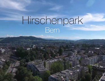 Hirschenpark (Bern)