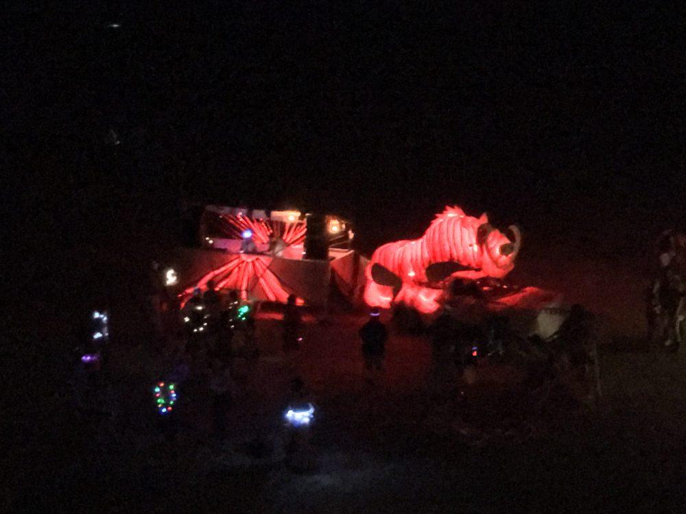 Gulli in der Nacht Foto: Dreas